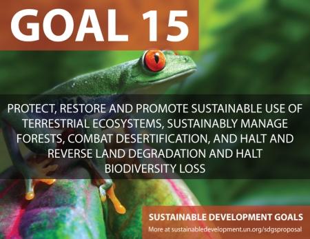 fifteen sustainable development goals